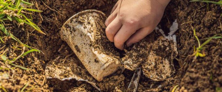 Desperately Seeking Biodegradable